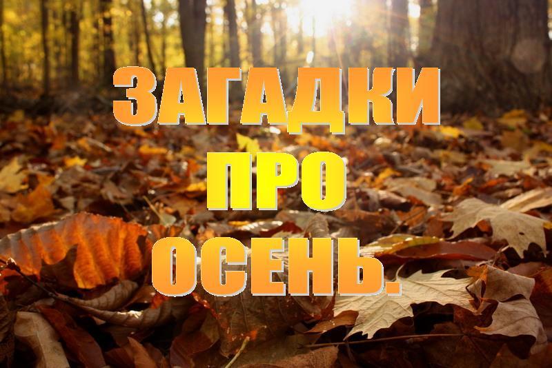 Загадки про осень