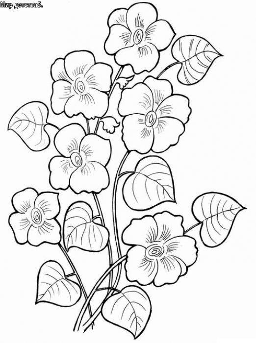 Распечатать раскраски про цветы