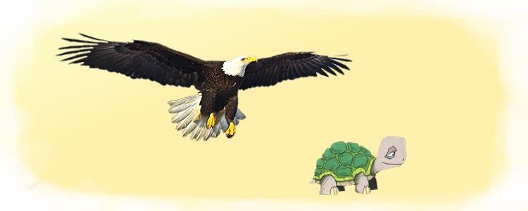 Орёл и Черепаха