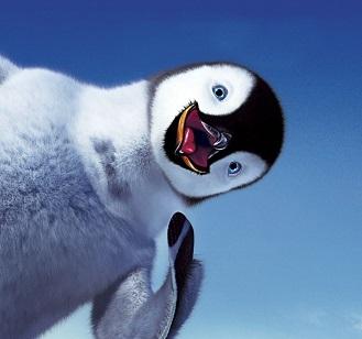 Загадки про пингвина